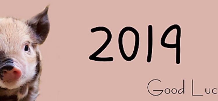 Прогноз на год Земляной Свиньи